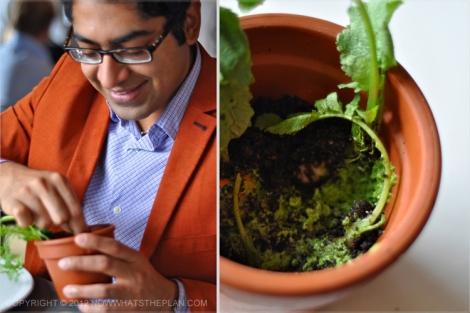 "KD enjoying Noma's pot of ""soil"""