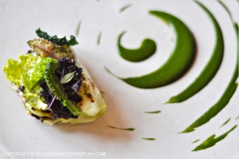 Cabbage leaves on a plate decorated with verbena sauce in concentric circles