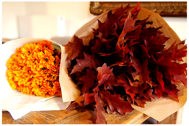 Fall foliage - red leaves and orange flowers
