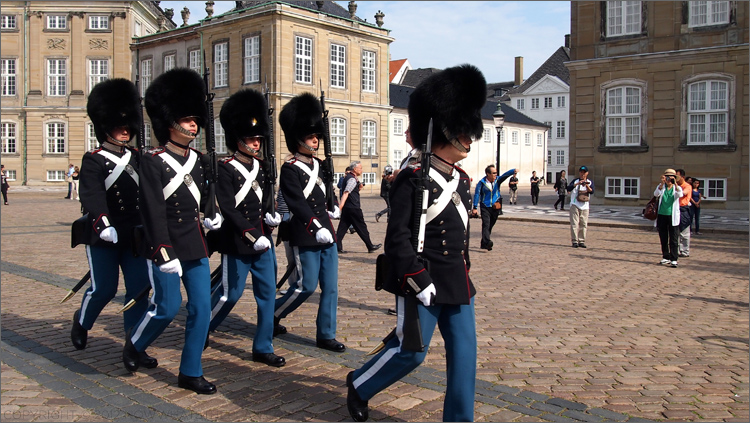 Danish royal guards