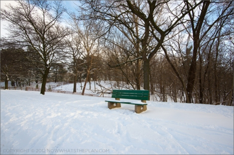 Snow-covered bench in High Park Toronto's Bloor West entrance