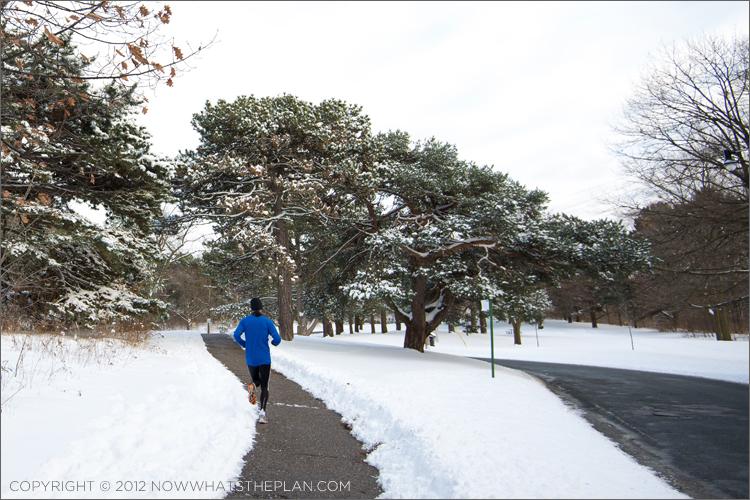 Runner in High Park Toronto