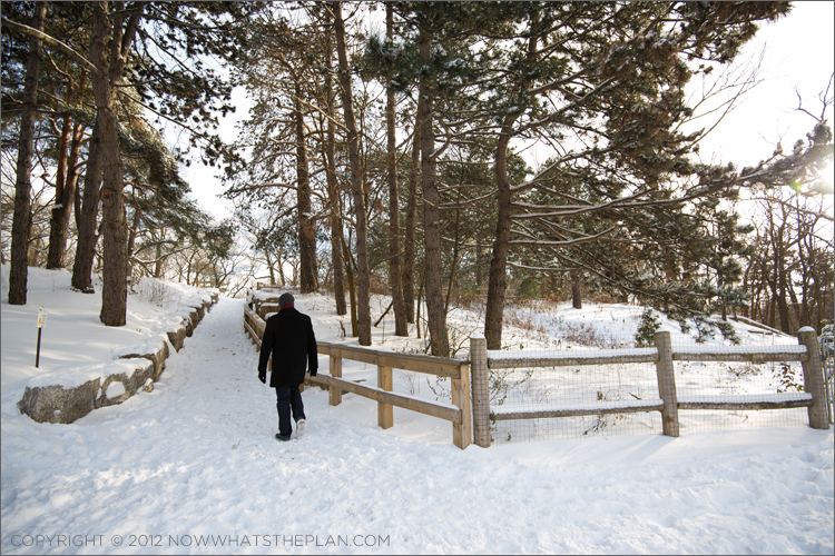 Snow-covered pathways leading into High Park Toronto
