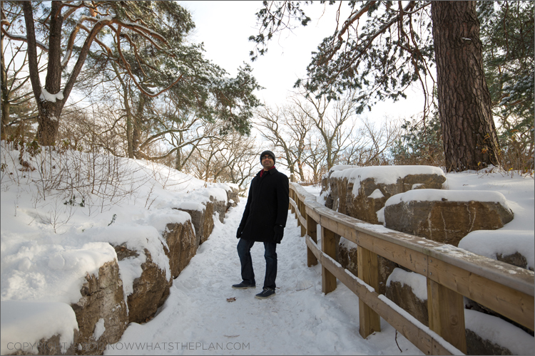 Taking the snow-covered pathways to High Park Toronto