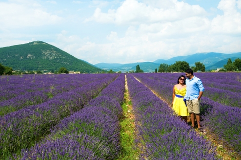 Best Travel Photos of 2013: Provence, France