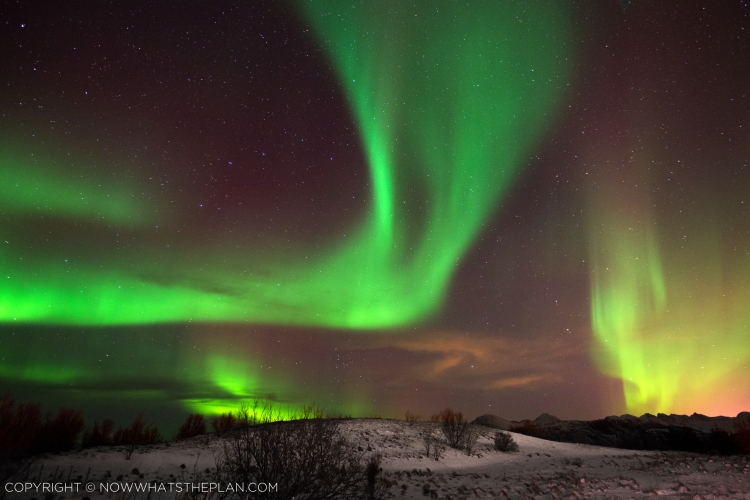 Norther Lights